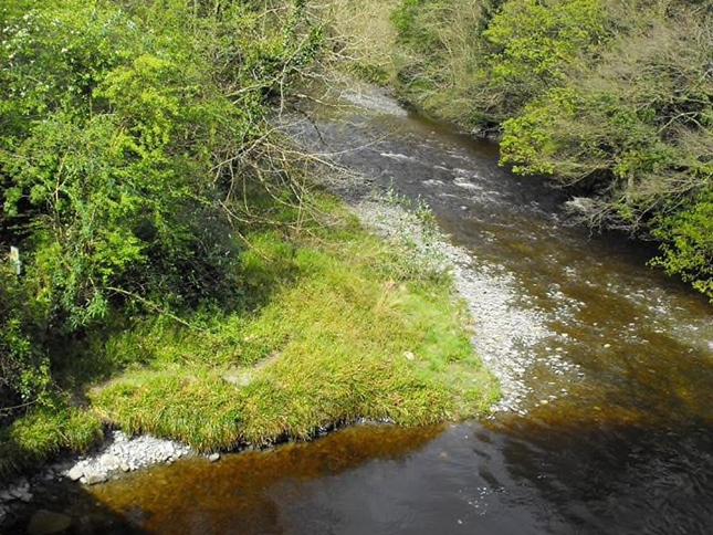 Dolau Afon River 3.png
