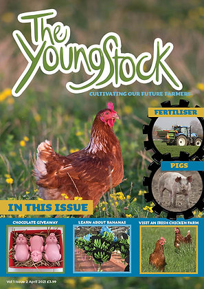 The April Issue