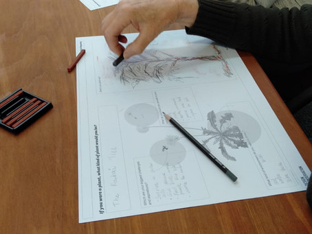 Exploring Botanical Empathy