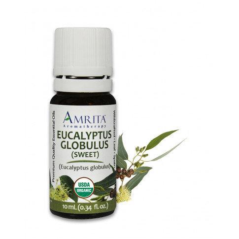 Amrita, Eucalyptus Globulus