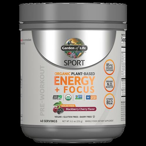 GOL, Sport Energy Focus, SF