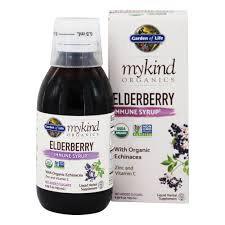 GOL, Elderberry Syrup 6.5 Oz