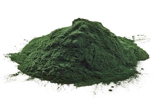 Blue Mountain Organics, Chlorella  powder 8oz