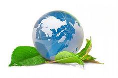 Допуск СРО Фенксок Лицензия МЧС Экологичская  безопасность