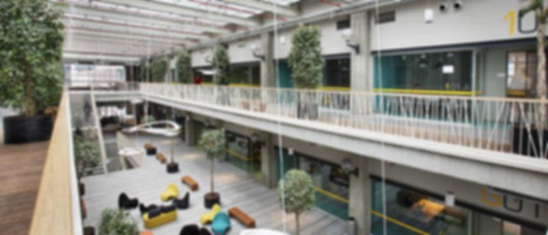 OZU Ozyegin University