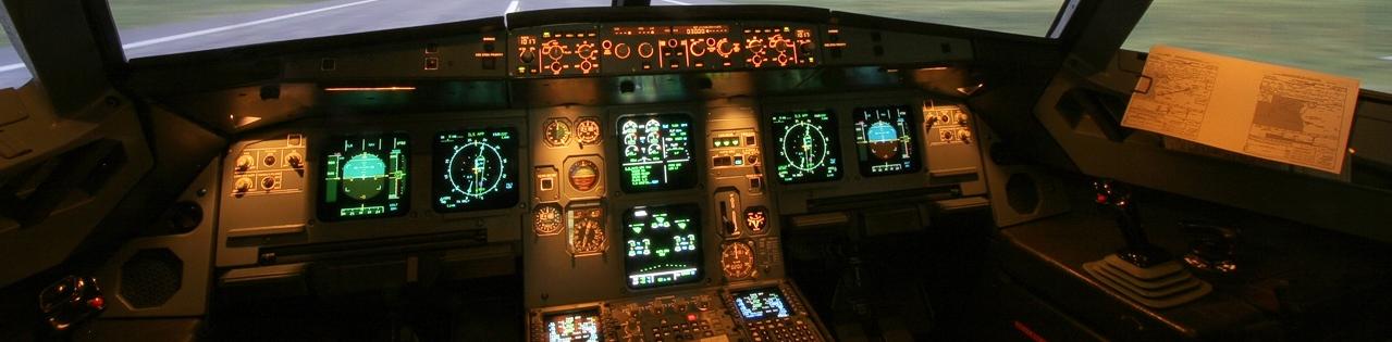 Airbus Ana Panel
