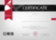 Virtual flight certification