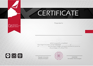 Virtual flight certification