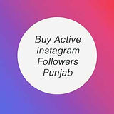 Buy Fast 100% Real Instagram Followers India Cheap | Buy Active Instagram Followers Punjab