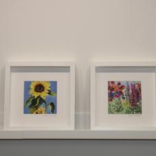 18. Sunflower 19. Irish Wildflowers
