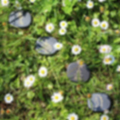 nature reiki symbols grass flowers