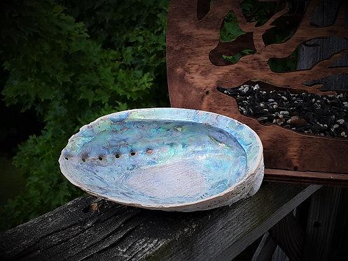 Abalone Shell - Smudge Bowl