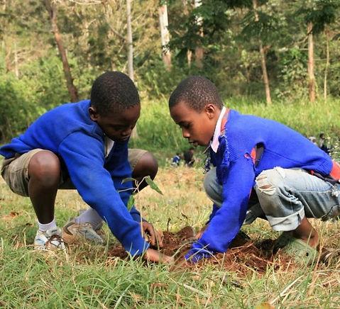 planting-seasons-tanzania.jpg