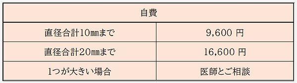 ほくろ(自費).jpeg