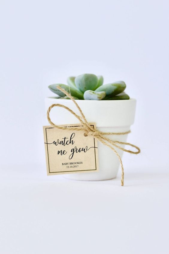 stationary, printable labels, baby shower favors, succulent pot gifts