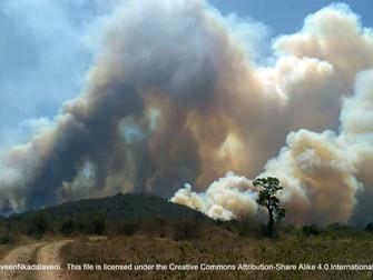 El cambio climático es generalizado, rápido y se está intensificando