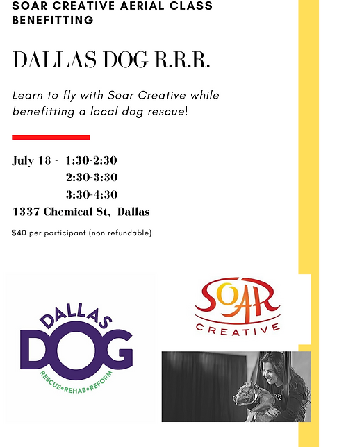 Dallas Dog RRR Aerial Class