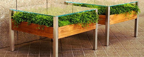 เติมสีเขียวให้บ้าน ด้วยสวนในโต๊ะสุดเก๋4.jpg