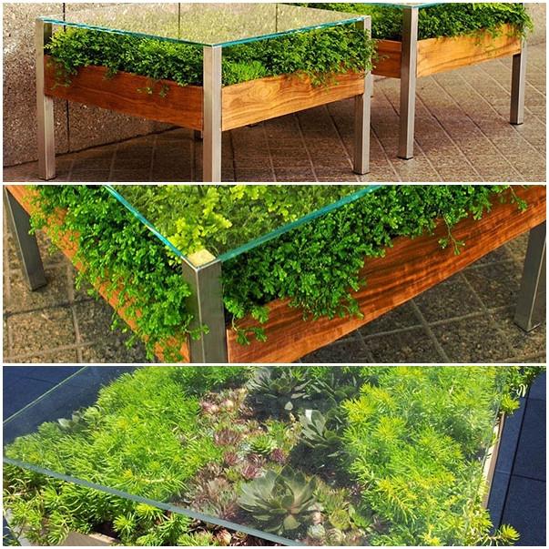 เติมสีเขียวให้บ้าน ด้วยสวนในโต๊ะสุดเก๋1.jpg