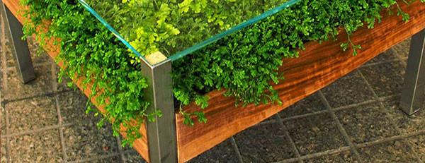 เติมสีเขียวให้บ้าน ด้วยสวนในโต๊ะสุดเก๋2.jpg