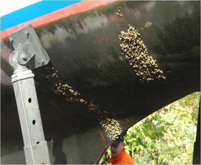 boat-hull-barnacles.jpg