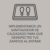 Sanitizador.png