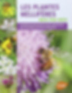 plantes_mellifères.jpg