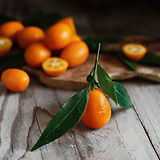 tout-savoir-sur-le-kumquat-les-meilleure