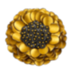 A brooch/pendant made with gold overlay petals, silver discs, and gold balls
