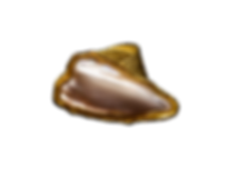 pearl heart ring.png