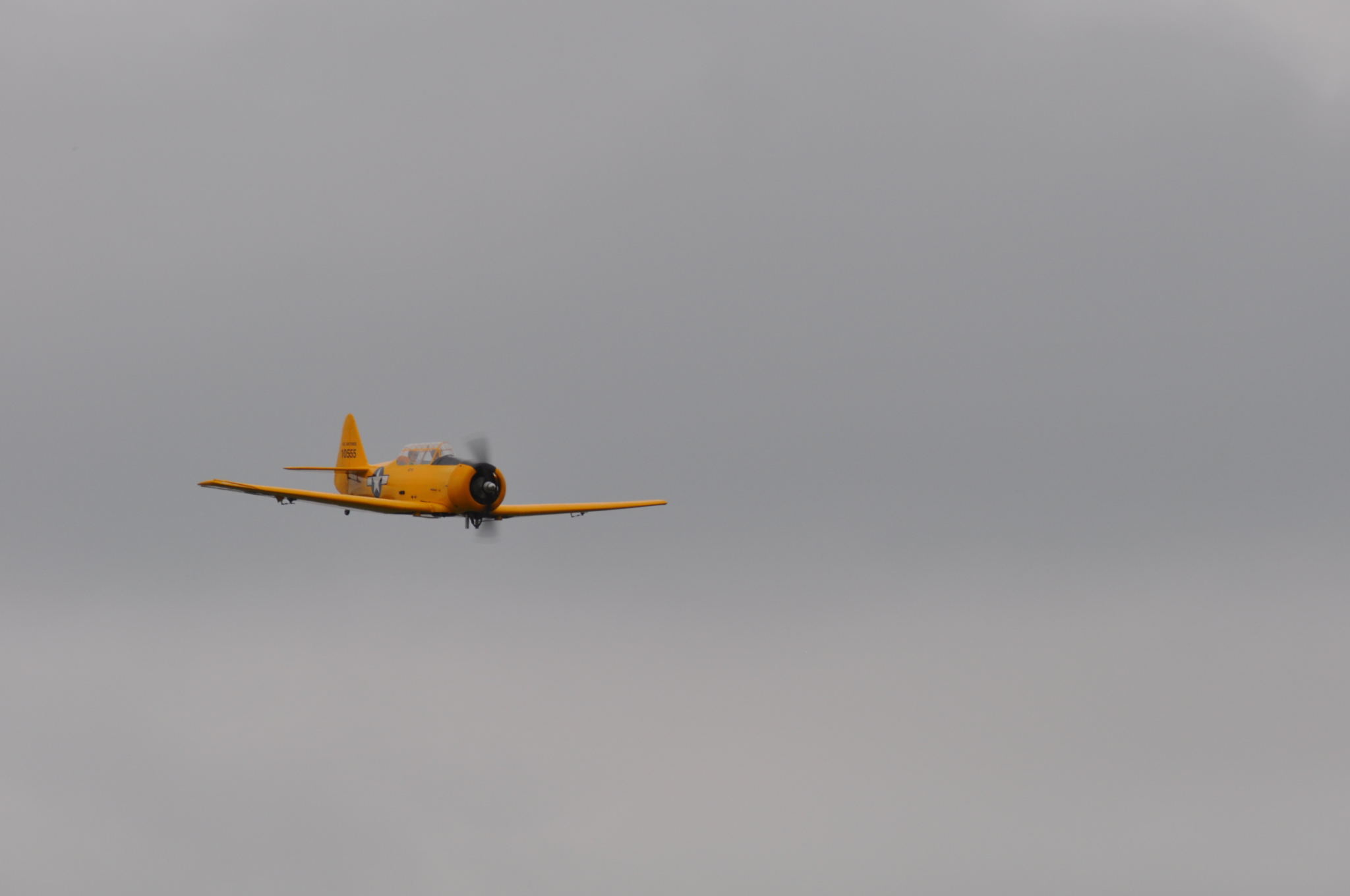 DSC_8961.JPG