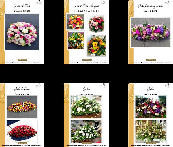 Catalogue miniature