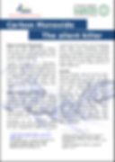 The Silent Killer Carbon Monoxide Leaflet