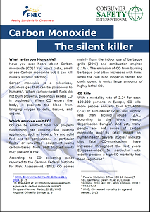 The Silent Killer Carbon Monoxide Leaflet