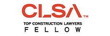 CLSA Fellow pdf.jpg