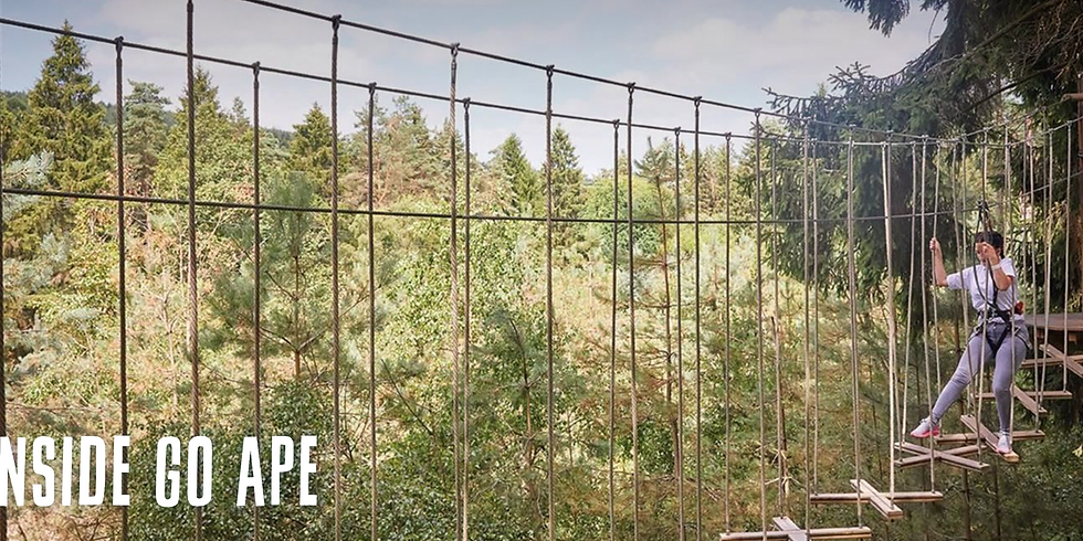 Go Ape at Battersea Park - French & English Group