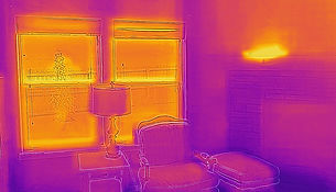 Colorado Springs Thermal Imaging FLIR One Pro