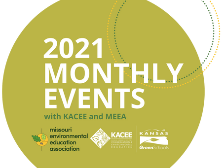 All You Need to Know About the 2021 Virtual Monthly Events (VMEs)