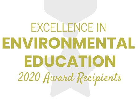 Recognizing the 2020 Excellence in EE Award Recipients