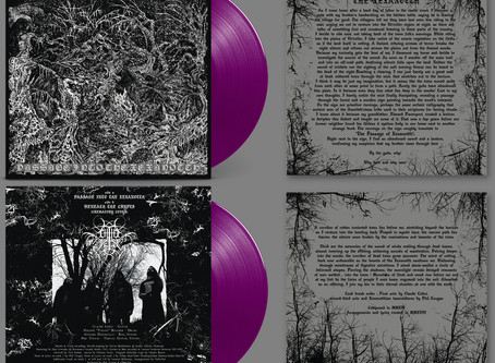 Review : Chthe'ilist - Passage Into The Xexanotth by Metal Archives