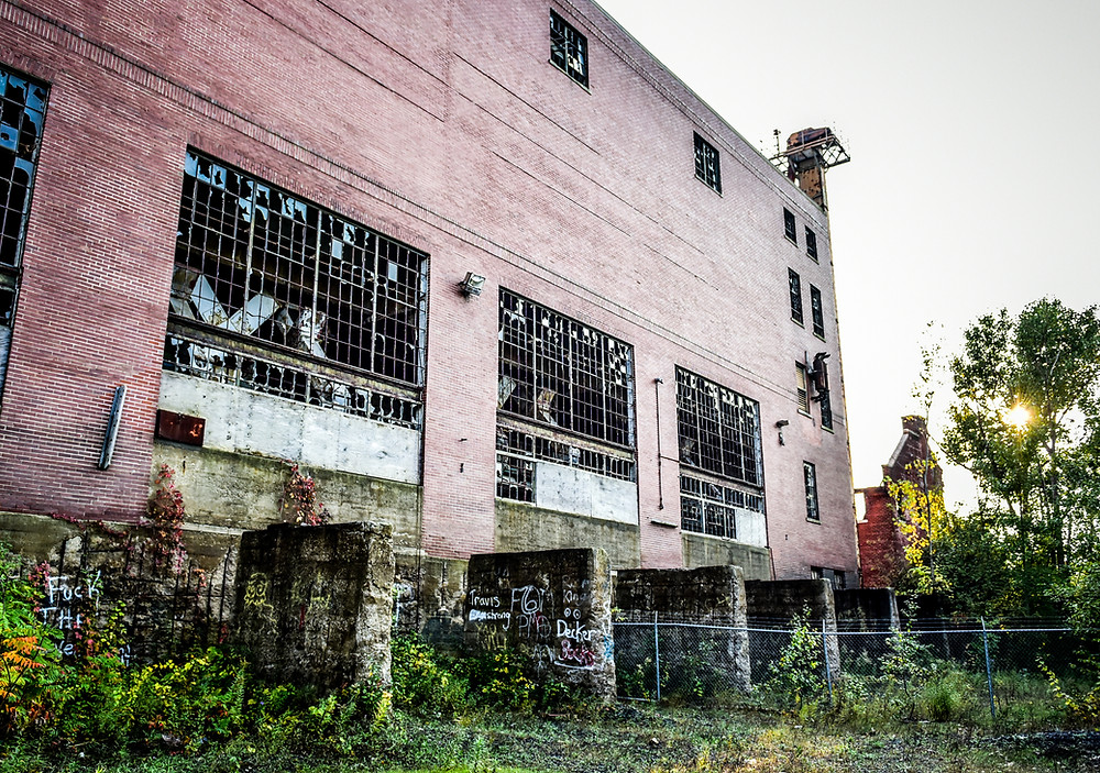 Eloise, Abandoned, Michigan, Haunted, Detroit Paranormal Expeditions, J&C Photography, Broken, Ghost, Plant