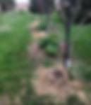 Screen Shot 2019-05-20 at 10.47.25.png