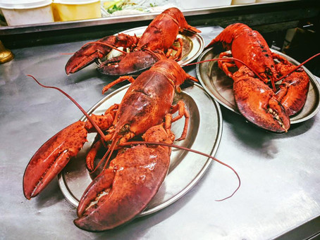 Why do we use Canadian lobsters?
