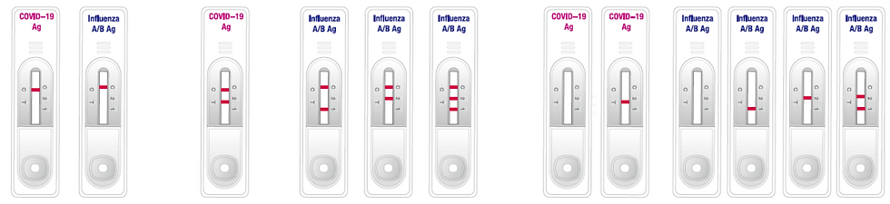 antigen-Influenza-gb.png