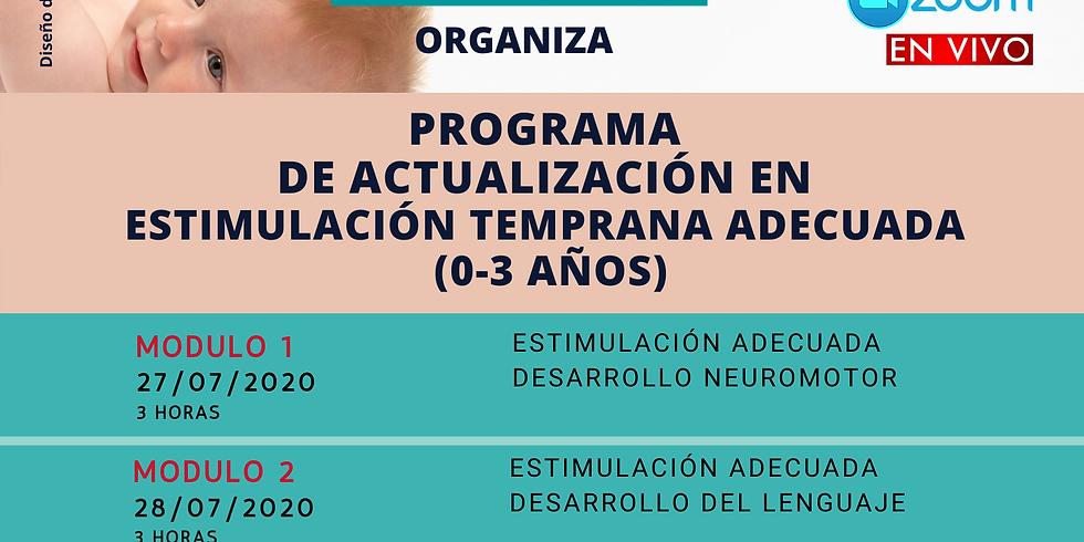 PROGRAMA DE ESTIMULACIÓN TEMPRANA ADECUADA
