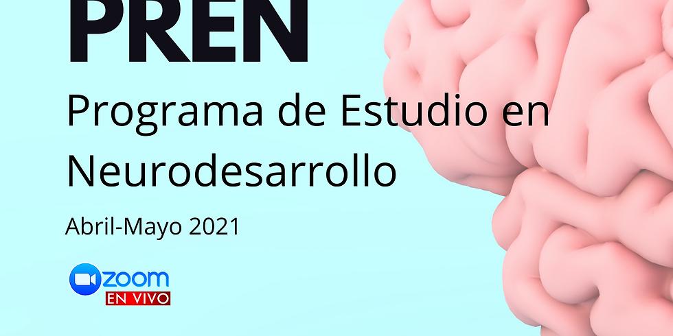 Neurocrecer - Programa de Estudio en Neurodesarrollo