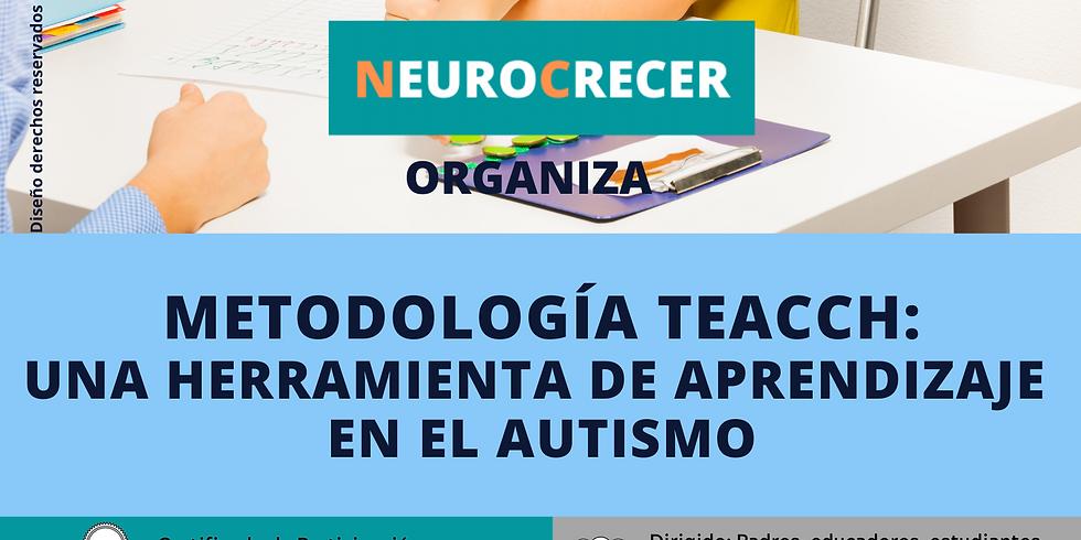 Neurocrecer - Metodología Teacch
