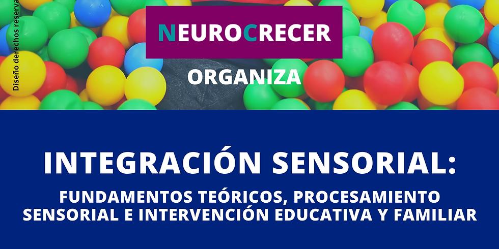 Integración Sensorial: Fundamentos Teóricos, Procesamiento Sensorial e Intervención Educativa y Familiar