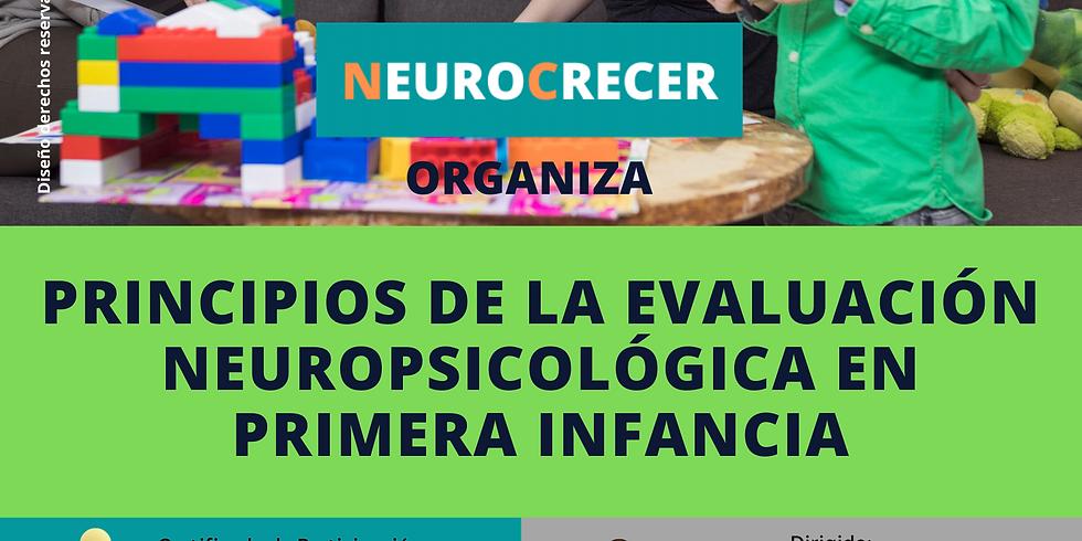 Principios de la Evaluación Neuropsicológica en Primera Infancia