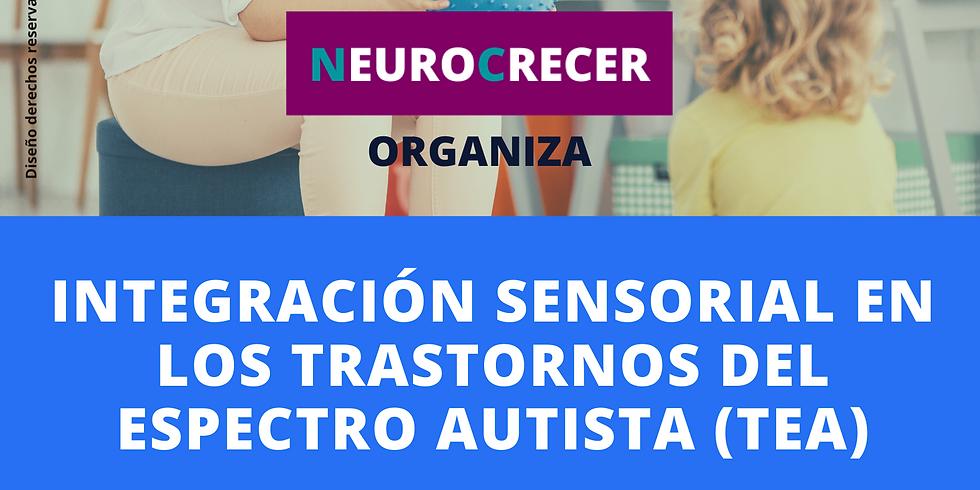 Neurocrecer - Integración Sensorial en TEA